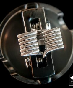 Beetle Juices Fused Clapton build